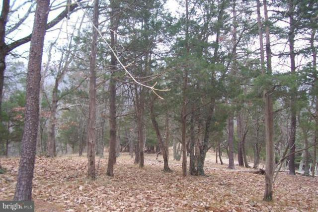 Hidden Hollow Road, ROMNEY, WV 26757 (#1000148301) :: Colgan Real Estate