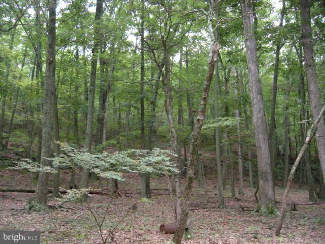 15-LOT # Hoover Young Drive, CAPON BRIDGE, WV 26711 (#1000148407) :: AJ Team Realty