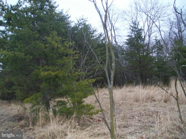 Proctor Road, PURGITSVILLE, WV 26852 (#1000148507) :: ExecuHome Realty
