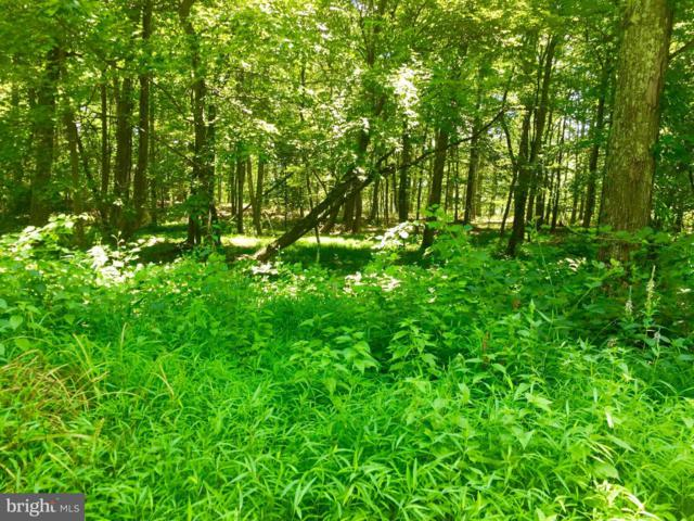 LOT 13 Falcon View Drive, CAPON BRIDGE, WV 26711 (#1000148567) :: Blue Key Real Estate Sales Team