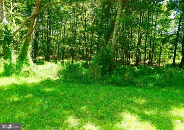 LOT 14 Falcon View Drive, CAPON BRIDGE, WV 26711 (#1000148591) :: Blue Key Real Estate Sales Team
