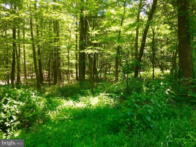 LOT 17 Falcon View Drive, CAPON BRIDGE, WV 26711 (#1000148631) :: Blue Key Real Estate Sales Team
