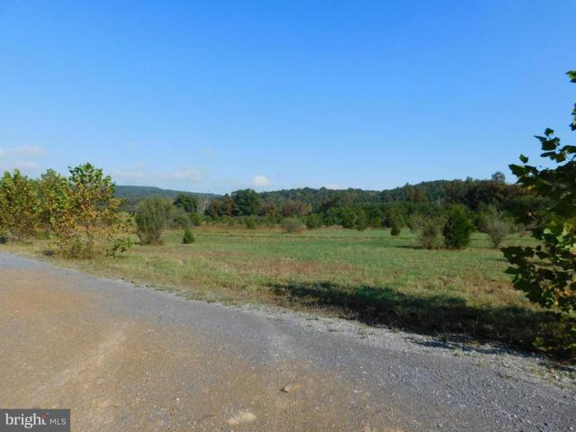 Lot 16 North River Rd, AUGUSTA, WV 26704 (#1000148635) :: ExecuHome Realty