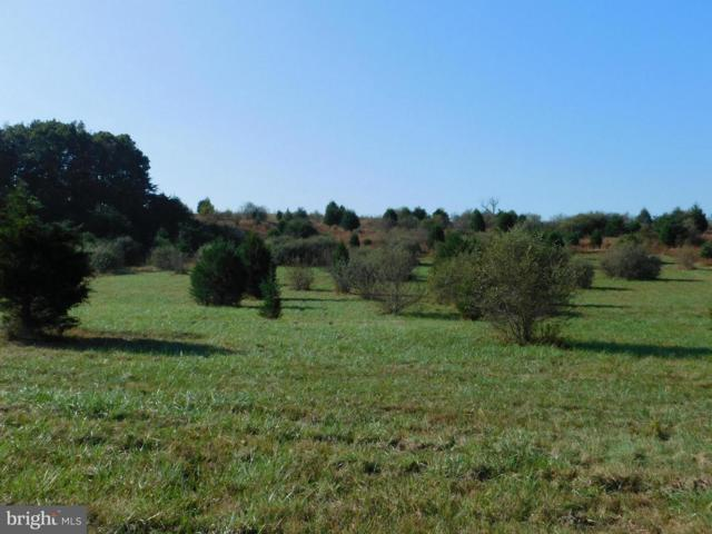 Lot 19 North River Rd, AUGUSTA, WV 26704 (#1000148647) :: ExecuHome Realty