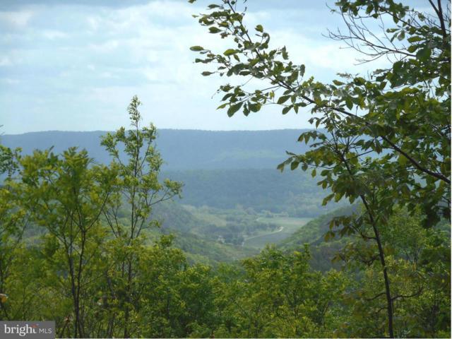 Bluffs Bluebird Trail, SPRINGFIELD, WV 26763 (#1000149001) :: Remax Preferred | Scott Kompa Group
