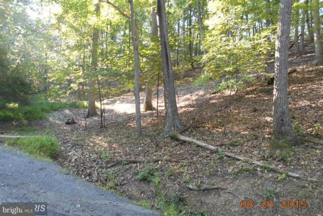 Cornwell Drive, ROMNEY, WV 26757 (#1000149247) :: ExecuHome Realty