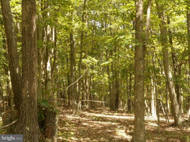 Rhododendron Trail, ROMNEY, WV 26757 (#1000149347) :: Colgan Real Estate