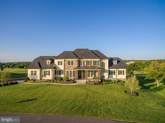 40192 Jefferson Springs Court, ALDIE, VA 20105 (#1000155479) :: Remax Preferred | Scott Kompa Group