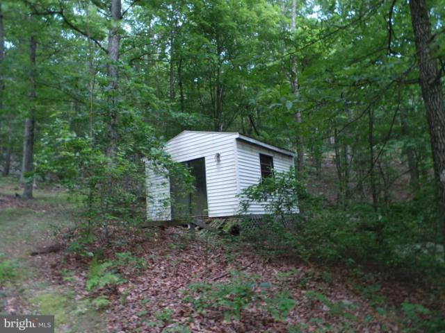 53 Senica Ridge Rd, GREAT CACAPON, WV 25422 (#1000167853) :: ExecuHome Realty
