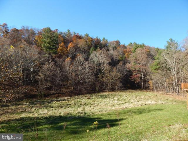Cacapon Road, GREAT CACAPON, WV 25422 (#1000168033) :: Remax Preferred | Scott Kompa Group
