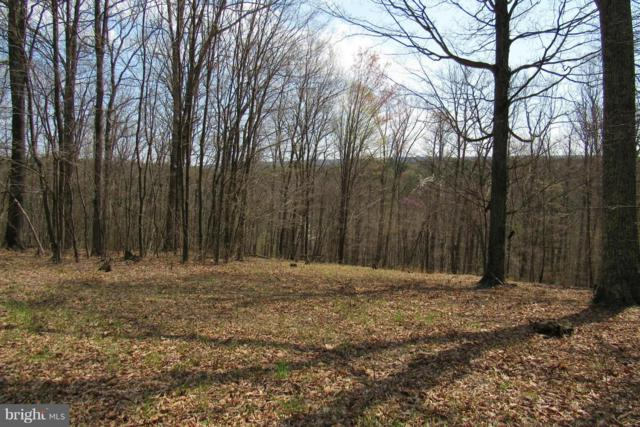Dogwood Flats, GREAT CACAPON, WV 25422 (#1000168203) :: Colgan Real Estate