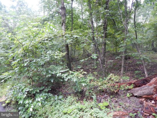 Maverick Trail, HEDGESVILLE, WV 25427 (#1000168529) :: City Smart Living