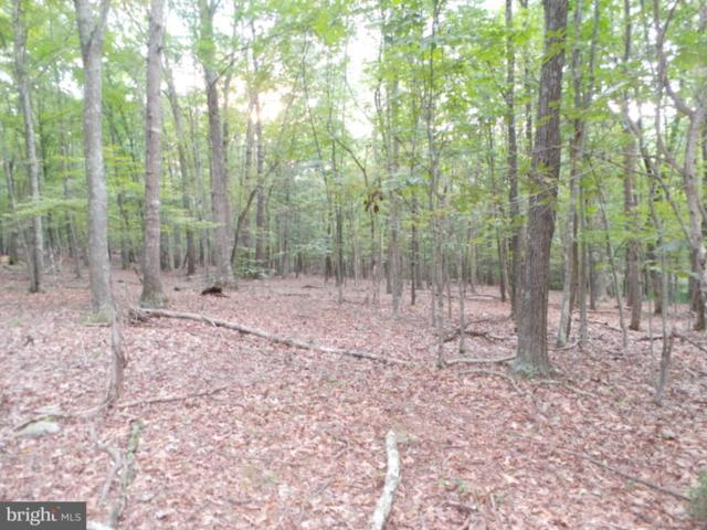 24 Harnest Hills, GREAT CACAPON, WV 25422 (#1000168545) :: ExecuHome Realty
