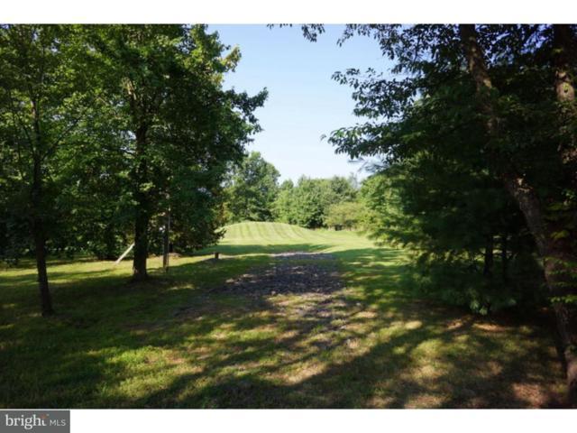 19-004 Swamp Road, CHALFONT, PA 18914 (#1000239595) :: Remax Preferred | Scott Kompa Group