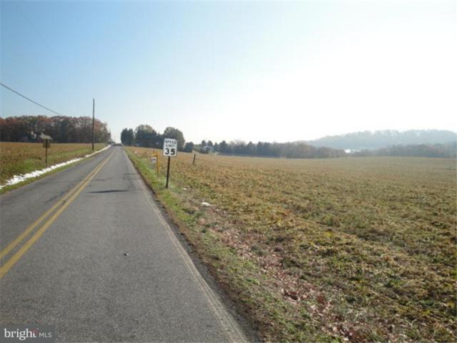 Lot #1 Stone Hill Road, SHOEMAKERSVILLE, PA 19555 (#1000252815) :: The Kirk Simmon Team