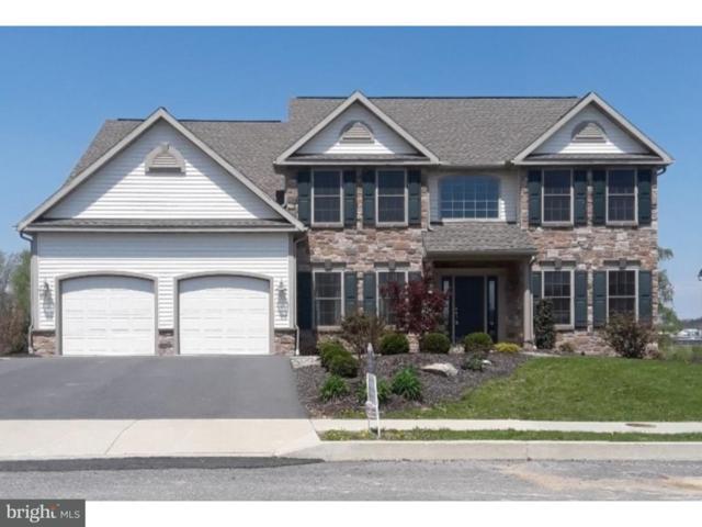 129 Stella Drive Lot 29, SINKING SPRING, PA 19608 (#1000253075) :: Colgan Real Estate