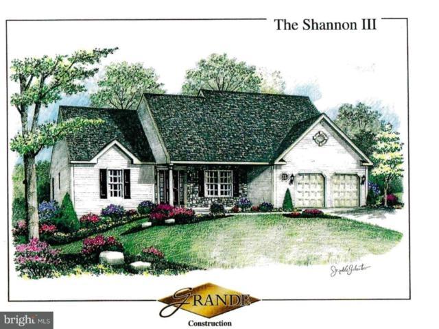 00 Stella Drive, SINKING SPRING, PA 19608 (#1000253661) :: Colgan Real Estate