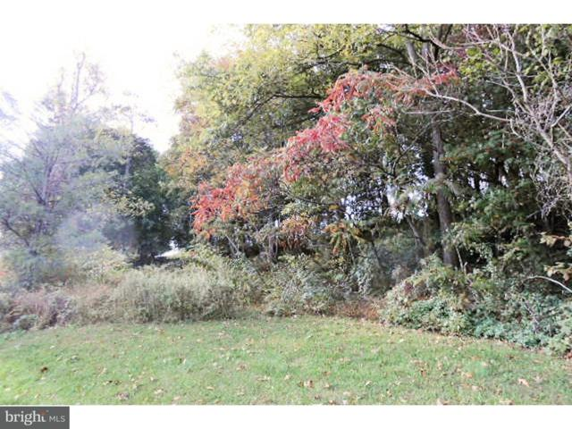 0 Deturksville Road, PINE GROVE, PA 17963 (#1000267227) :: Jason Freeby Group at Keller Williams Real Estate