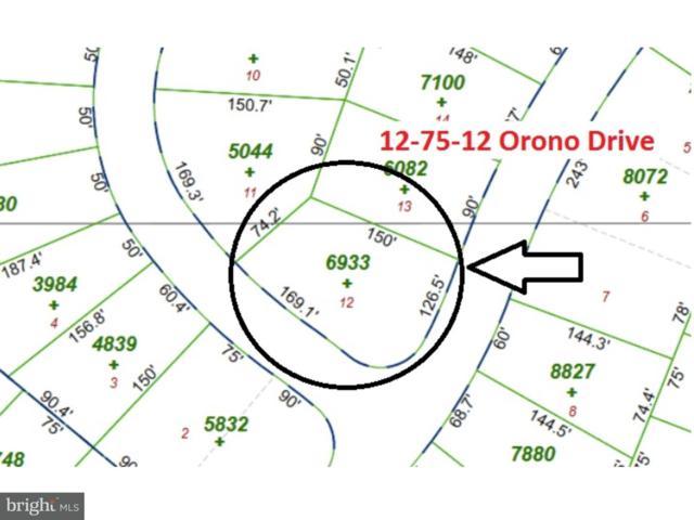 12-75 Orono Drive, POCONO LAKE, PA 18347 (#1000270057) :: LoCoMusings