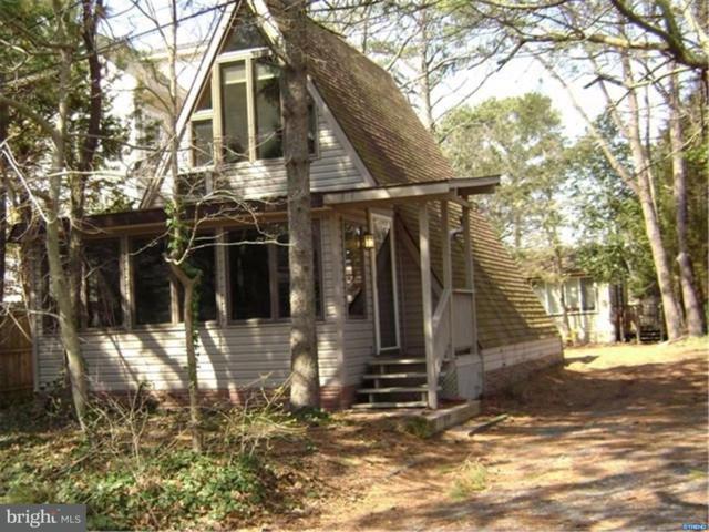 20540 Washington Street, REHOBOTH BEACH, DE 19971 (#1000330215) :: Colgan Real Estate
