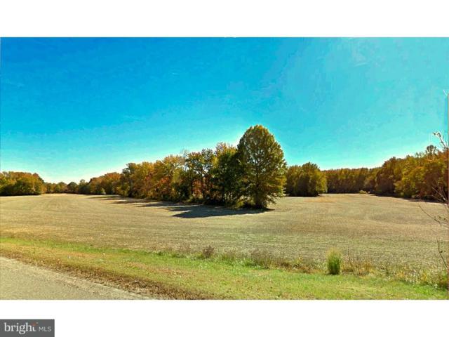 369 Route 40, CARNEYS POINT, NJ 08069 (#1000372675) :: Colgan Real Estate