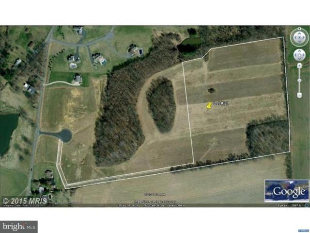 19 Pearl Wyn Lane, RISING SUN, MD 21911 (#1000384473) :: Remax Preferred | Scott Kompa Group