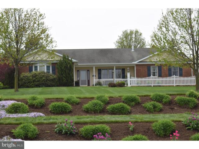 14 Norma Lane, RICHLAND, PA 17087 (#1000385055) :: The Heather Neidlinger Team With Berkshire Hathaway HomeServices Homesale Realty