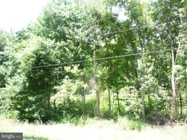 Lot 3 Oak Point School Road, CAMDEN WYOMING, DE 19934 (#1001216271) :: The Rhonda Frick Team