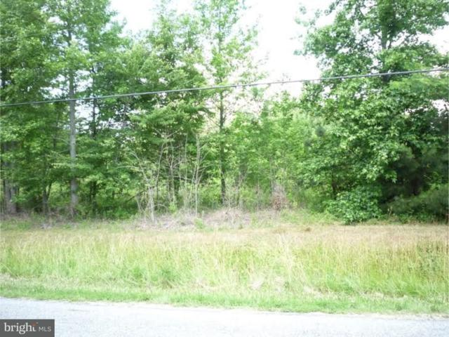 Lot 1 Oak Point School Road, WYOMING, DE 19934 (#1001216345) :: The Rhonda Frick Team