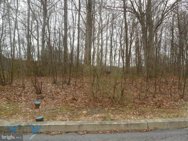 Lot 127 Ridgeview Drive, ORWIGSBURG, PA 17961 (#1001241449) :: The Craig Hartranft Team, Berkshire Hathaway Homesale Realty