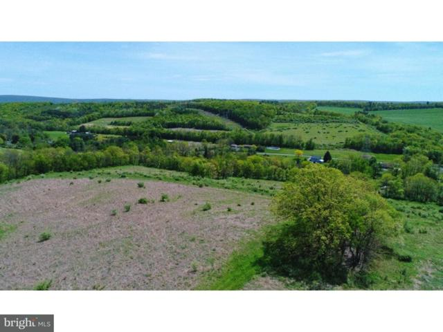 0 Mush Dahl Road, NEW RINGGOLD, PA 17960 (#1001242405) :: The Heather Neidlinger Team With Berkshire Hathaway HomeServices Homesale Realty