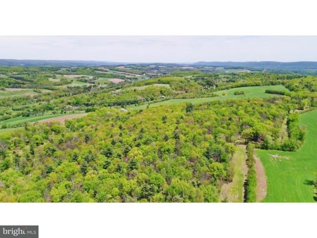 0 Shady Lane, NEW RINGGOLD, PA 17960 (#1001242445) :: The Heather Neidlinger Team With Berkshire Hathaway HomeServices Homesale Realty