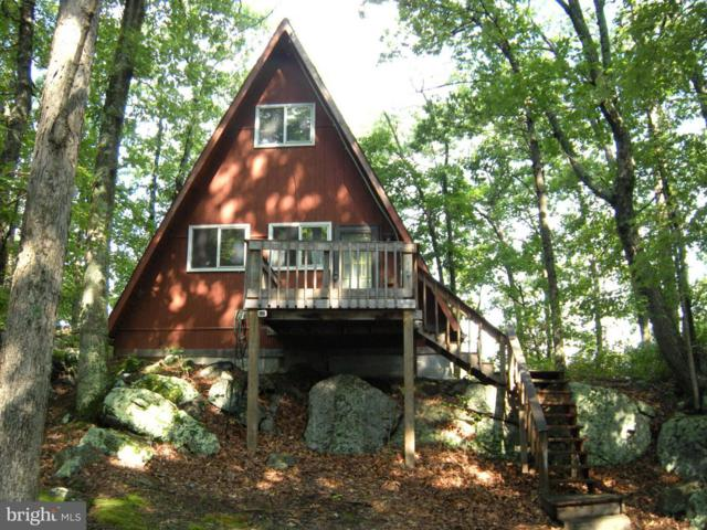 717 Haines Drive, CAPON BRIDGE, WV 26711 (#1001751243) :: The Maryland Group of Long & Foster