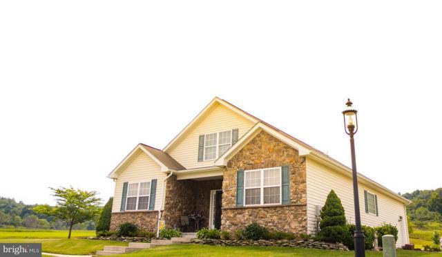 110 Heartwood Drive, FROSTBURG, MD 21532 (#1002659581) :: Colgan Real Estate