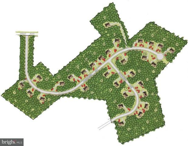 Lot 21 Hummingbird Way, PALMYRA, PA 17078 (#1002665547) :: The Craig Hartranft Team, Berkshire Hathaway Homesale Realty