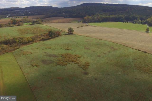 Lot 17 S Fileys Road, DILLSBURG, PA 17019 (#1002671535) :: The Heather Neidlinger Team With Berkshire Hathaway HomeServices Homesale Realty