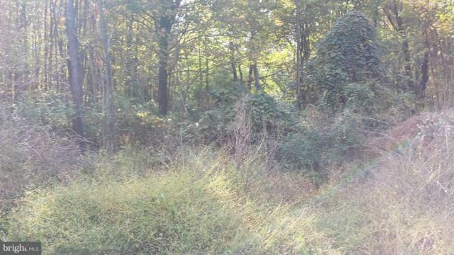 Lot 5-6 Sour Mash Trail, FAIRFIELD, PA 17320 (#1002672047) :: The Joy Daniels Real Estate Group
