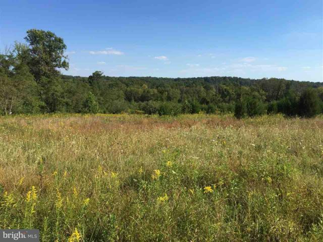 Lot 1 Pinetown Road, WELLSVILLE, PA 17365 (#1003132611) :: The Joy Daniels Real Estate Group