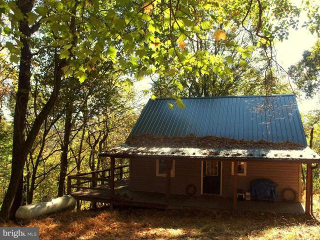 1378 Loop Road, FRANKLIN, WV 26807 (#1003150595) :: Remax Preferred | Scott Kompa Group