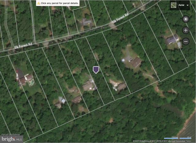 Lot 222 Elk Forest Road, ELKTON, MD 21921 (#1003228987) :: ExecuHome Realty