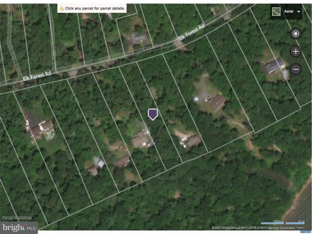 Lot 222 Elk Forest Road, ELKTON, MD 21921 (#1003279827) :: Colgan Real Estate