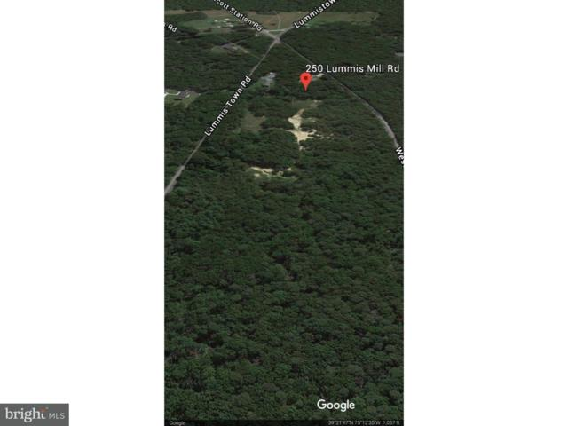 250 Lummis Mill Road, FARTON, NJ 08302 (#1003279809) :: Bob Lucido Team of Keller Williams Integrity