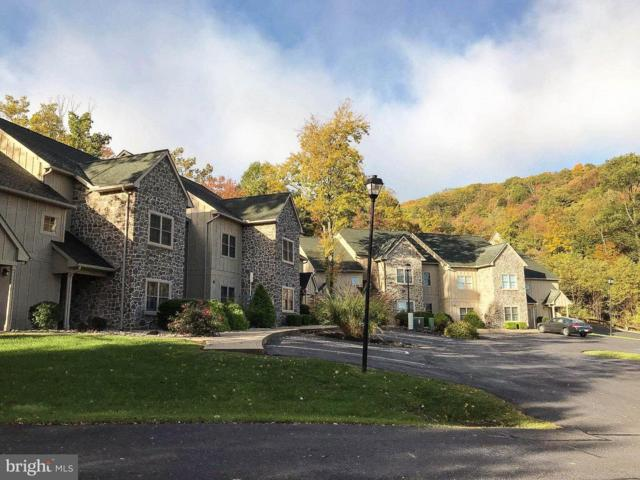 14092 Blairs Ridge Dr #2, MERCERSBURG, PA 17236 (#1003302529) :: CENTURY 21 Core Partners