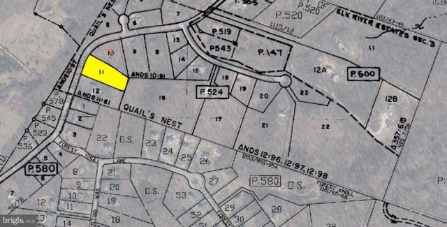 Lot 11 Old Elk Neck Road, ELKTON, MD 21921 (#1003307649) :: AJ Team Realty