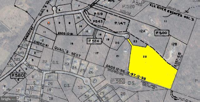 Lot 22 Sparrows Way, ELKTON, MD 21921 (#1003307813) :: Century 21 New Millennium