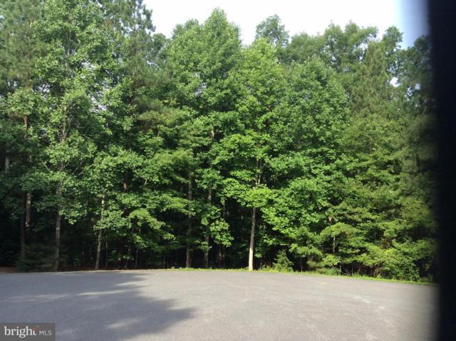 15307 Walnut Tree Court, MINERAL, VA 23117 (#1003666979) :: Colgan Real Estate