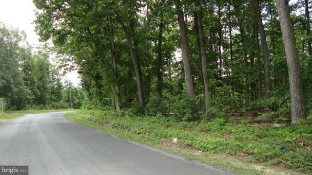 0 Kibler Drive, LURAY, VA 22835 (#1003667463) :: Arlington Realty, Inc.