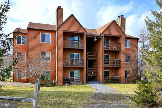 29 Herzwood Drive C301, DAVIS, WV 26260 (#1004011235) :: Labrador Real Estate Team