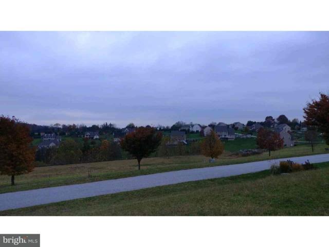 17 Fernsler Drive #12, QUARRYVILLE, PA 17536 (#1004125133) :: Remax Preferred | Scott Kompa Group