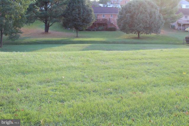 Oakcrest Drive, LURAY, VA 22835 (#1004190973) :: Blue Key Real Estate Sales Team